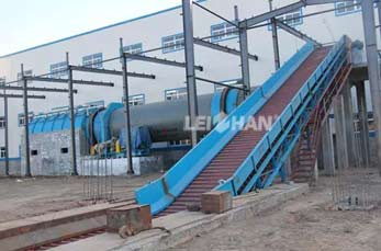 Conveying Machine BFW chain conveyor