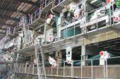3800 Five-wire Coating Board Paper Machine